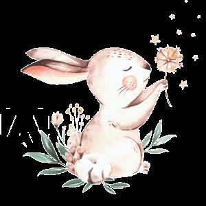 El conejo que no crecía